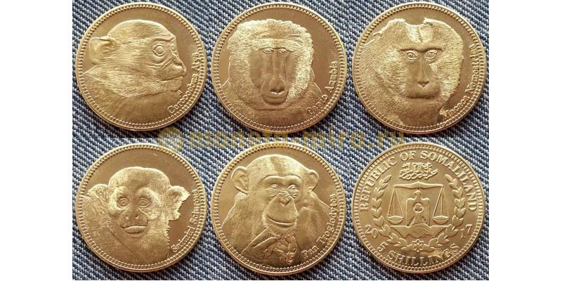 Набор из 5 монет Сомалиленда 5 шилингов 2016 г. Обезьяны