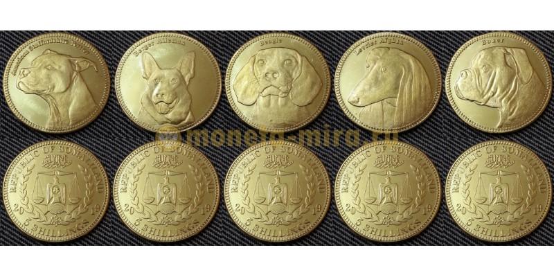 Набор из 5 монет Сомалиленда 5 шилингов 2019 г. Собаки