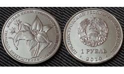 1 рубль ПМР 2019 г. Тюльпан Биберштейна, серия красная книга