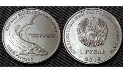 1 рубль ПМР 2018 г. Осетр русский, серия красная книга