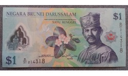 1 доллар ринггит Брунея 2013 г. полимер-пластик