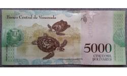 5000 боливаров Венесуэлы 2017 г. Черепаха Хоксбилл