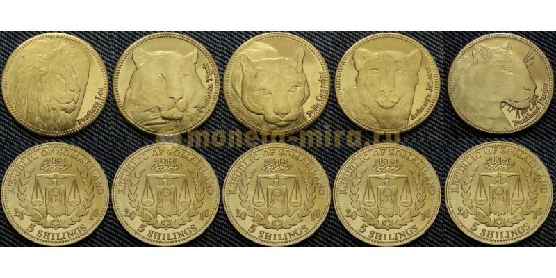 Набор из 5 монет Сомалиленд 5 шилингов 2016 г. Кошки